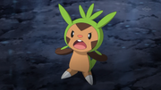 EP886 Chespin de Lem.png