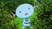 EP873 Wooper.png