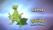 EP932 Cual es este Pokémon.png