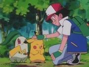 EP134 Chikorita y Pikachu.jpg