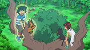 EP1068 Kukui y Ash en la cabeza de Trevenant.png
