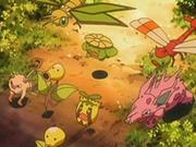 EP540 Pokémon huyendo del bosque (2).png