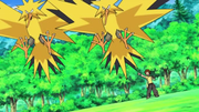 EP642 Zapdos.png