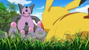 EP865 Grumpig VS Pikachu.png