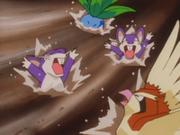 EP031 Pokémon arrastrados por la corriente.png