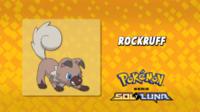 Rockruff.
