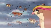 P02 Pokémon voladores (1).png