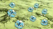 EP841 Froakie usando doble equipo.png