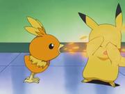 EP310 Torchic atacando al Pikachu de Ash.png