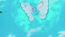 Butterfree usando Velo Sagrado