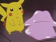 EP037 Pikachu y Ditto.png