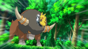 EP714 Bouffalant vs Pikachu.png
