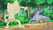 EP660 Meowth viendo a Pikachu, Togekiss y Piplup atrapados en la red.jpg