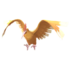 Fearow GO.png