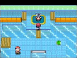 Interior del Gimnasio de Pradera en los videojuegos