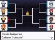 Torneo Mundial Pokémon N2B2 Campeones.png