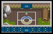 Liga Pokémon (Sinnoh) Sala Alecrán Pt.png
