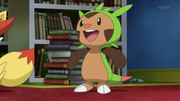 EP808 Chespin.png