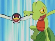 EP288 Taillow y Treecko.jpg