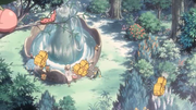 P10 Pokémon en los jardines.png