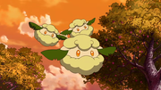 P14 Cottonee.png