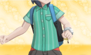 Camisa de Rayas Verde.PNG