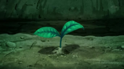 EP794 Cultivos volviendo a crecer.png
