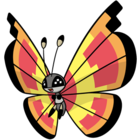 Vivillon solar (dream world).png