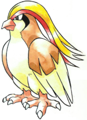 Pidgeot en la primera generación.png