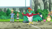 EP881 Pidgeotto y Hoppip.png
