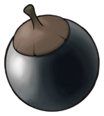 Ilustración de Bonguri negro