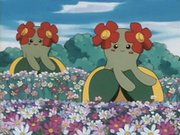 EP182 Bellossom.png