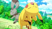 EP805 Pikachu VS Bunnelby.png