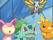 EP353 Skitty, Beautifly, Bulbasaur y Torchic.png