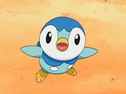 EP544 Piplup.png