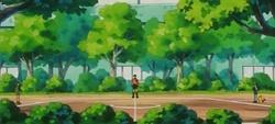 Campo de batalla del Gimnasio de Azalea en el anime