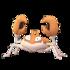 Krabby GO.png