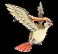 Ilustración de Pidgeot