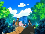 EP507 Weedle y Starly heridos.png