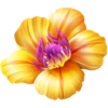Flor tropical GO.png