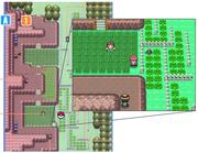 Localización exacta del colmillo agudo en Pokémon Platino en la ruta 214. Situarse además en el punto exacto en el que está el personaje en la imagen y pulsar .