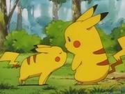 EP039 Pikachu pequeño oliendo a Pikachu.png