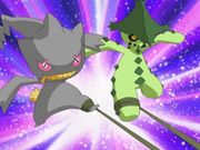 EP400 Banette y Cacturne sujetos.png