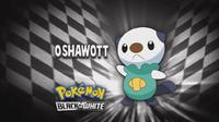 """Oshawott en el segmento """"¿Quién es ese Pokémon?/¿Cuál es este Pokémon?"""""""