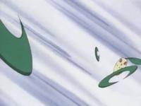 Chikorita usando hoja afilada.