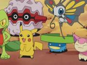 EP325 Pikachu, Lotad, Skitty, Beautifly, Treecko y Forretress.png