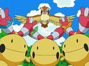 EP539 Chingling y Pidgey.png