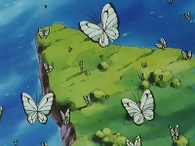 Bandada de Butterfree