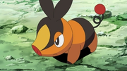 EP705 Tepig.png