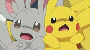 EP724 Minccino y Pikachu asustados.png
